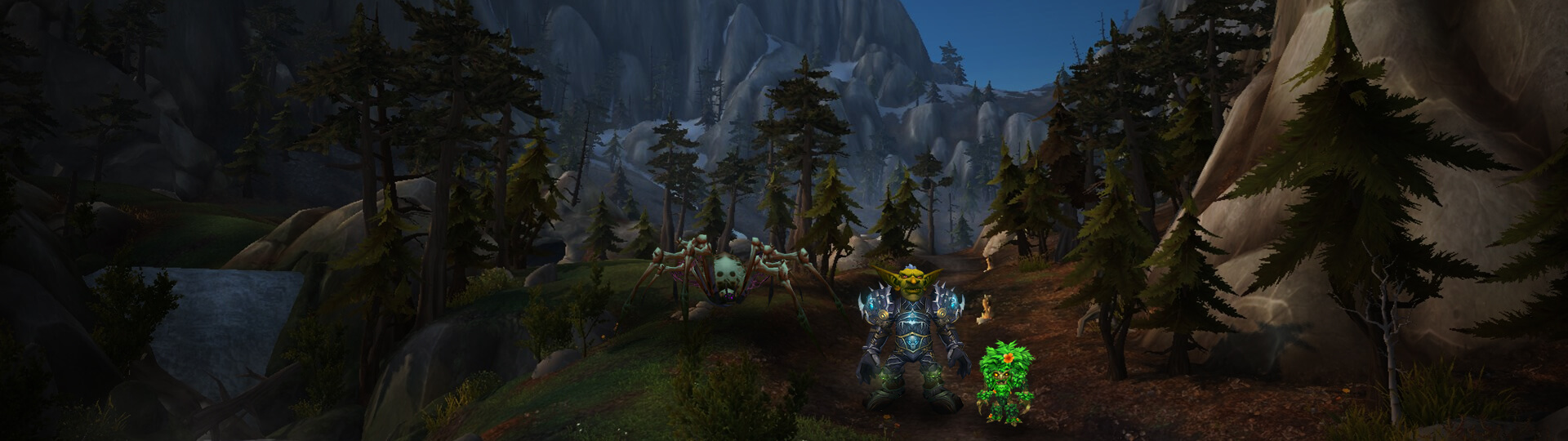 WoW  miscellaneous leveling and items